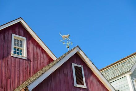 cat weather vane on roof